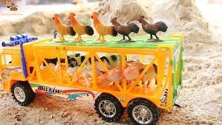 รถบรรทุกขนสัตว์ฟาร์ม แกะไข่เซอร์ไพรส์ Farm Animal Transportation On Truck