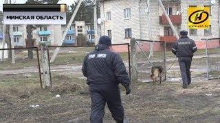 Служебная собака помогла разыскать грабителя банка