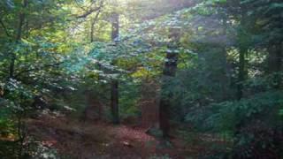Little Lights- Ane Brun (feat. Syd Matters)