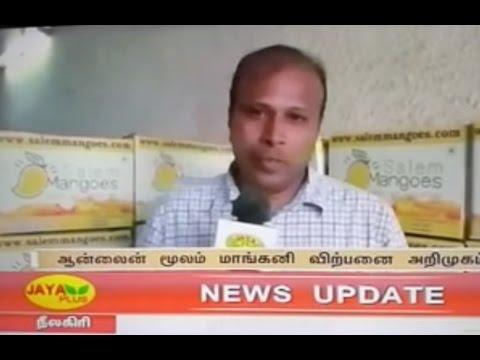 Jaya News about Salem Mangoes - 2017