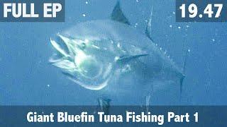 GIANT BLUEFIN TUNA FISHING PART 1