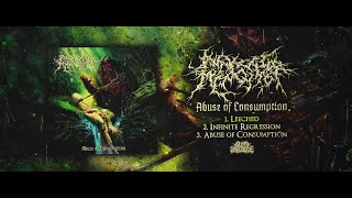 AWAKEN THE MISOGYNIST - ABUSE OF CONSUMPTION [OFFICIAL EP STREAM] (2020) SW EXCLUSIVE