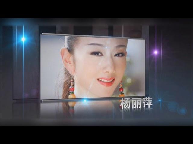 12th Huading Shanghai - Volkswagen People's Choice Awards - III