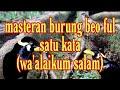 Masteran Burung Beo Ful Satu Kata Waalikum Salam  Mp3 - Mp4 Download