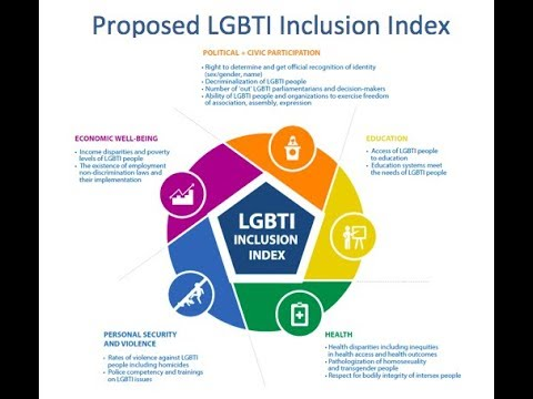 Economic Well Being Dimension Webinar - LGBTI Inclusion Index