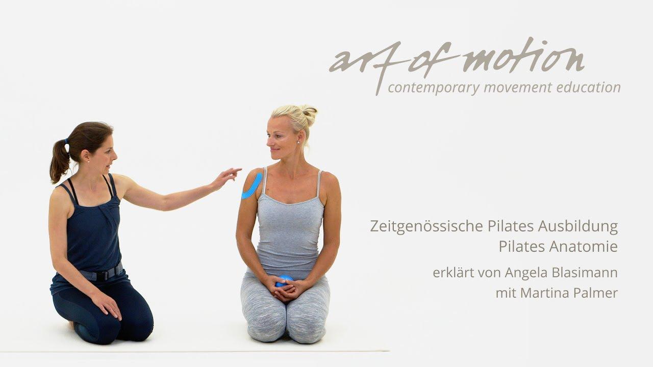 Zeitgenössische Pilates Ausbildung: Pilates Anatomie - YouTube