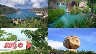 Thiên nhiên đa sắc tại vườn quốc gia Núi Chúa | VTC