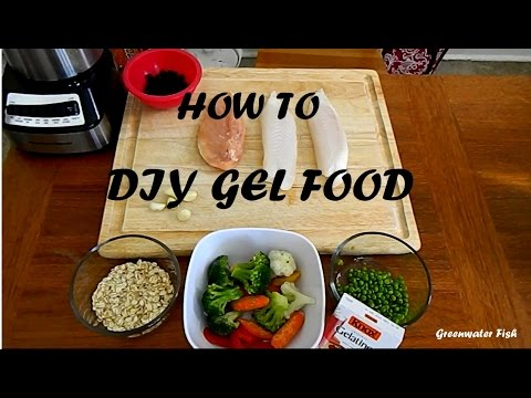 How To Make DIY Gel Food For Fish