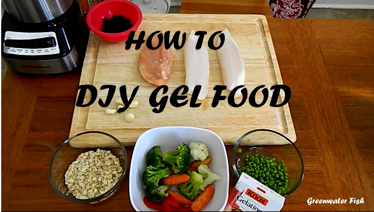 How to make diy gel food for fish youtube how to make diy gel food for fish forumfinder Image collections