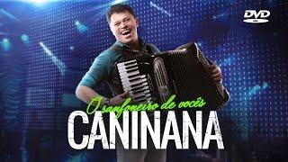 DVD Caninana do Forró
