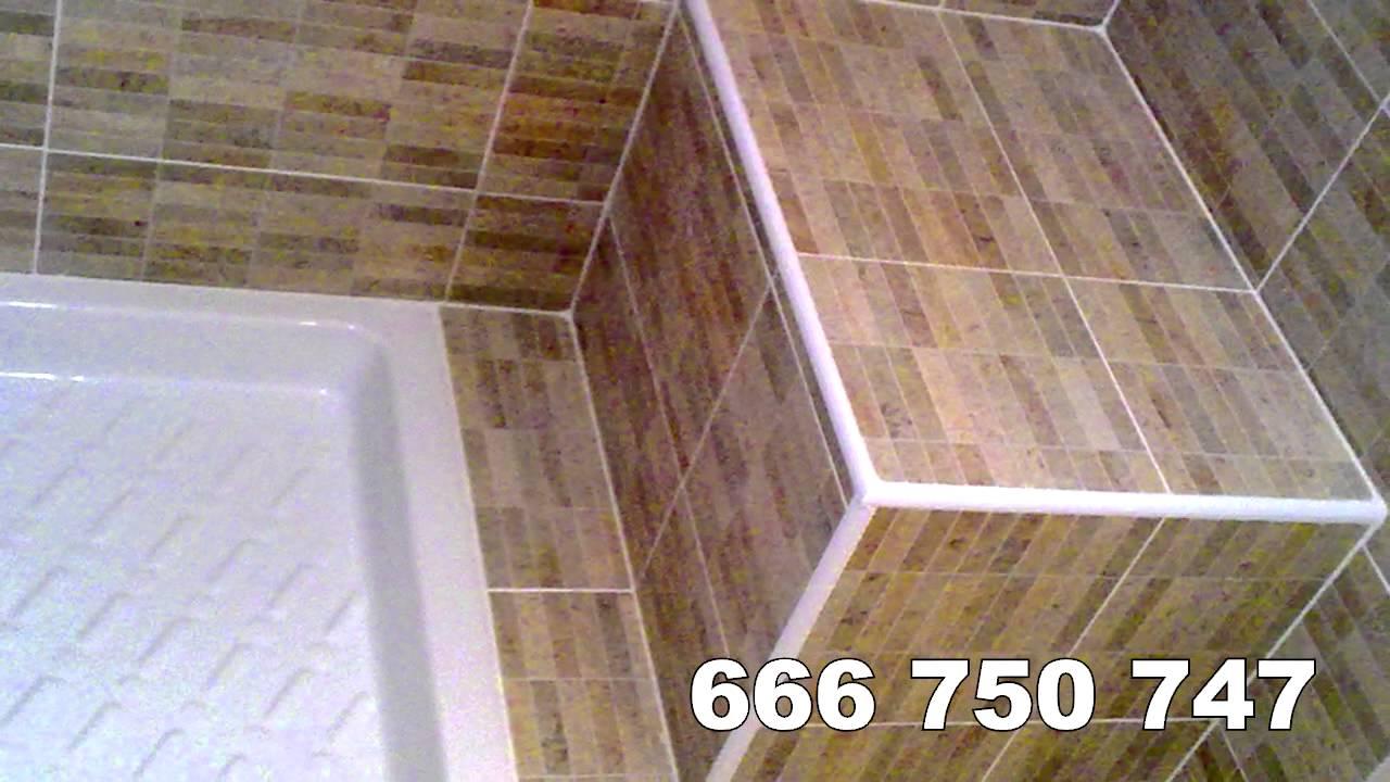 Ideas para cambiar bañera por plato de ducha. Empresa especializada ...