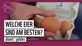 Welche Eier kaufen? Sind Bio-Eier wirklich besser? | WWF Deutschland
