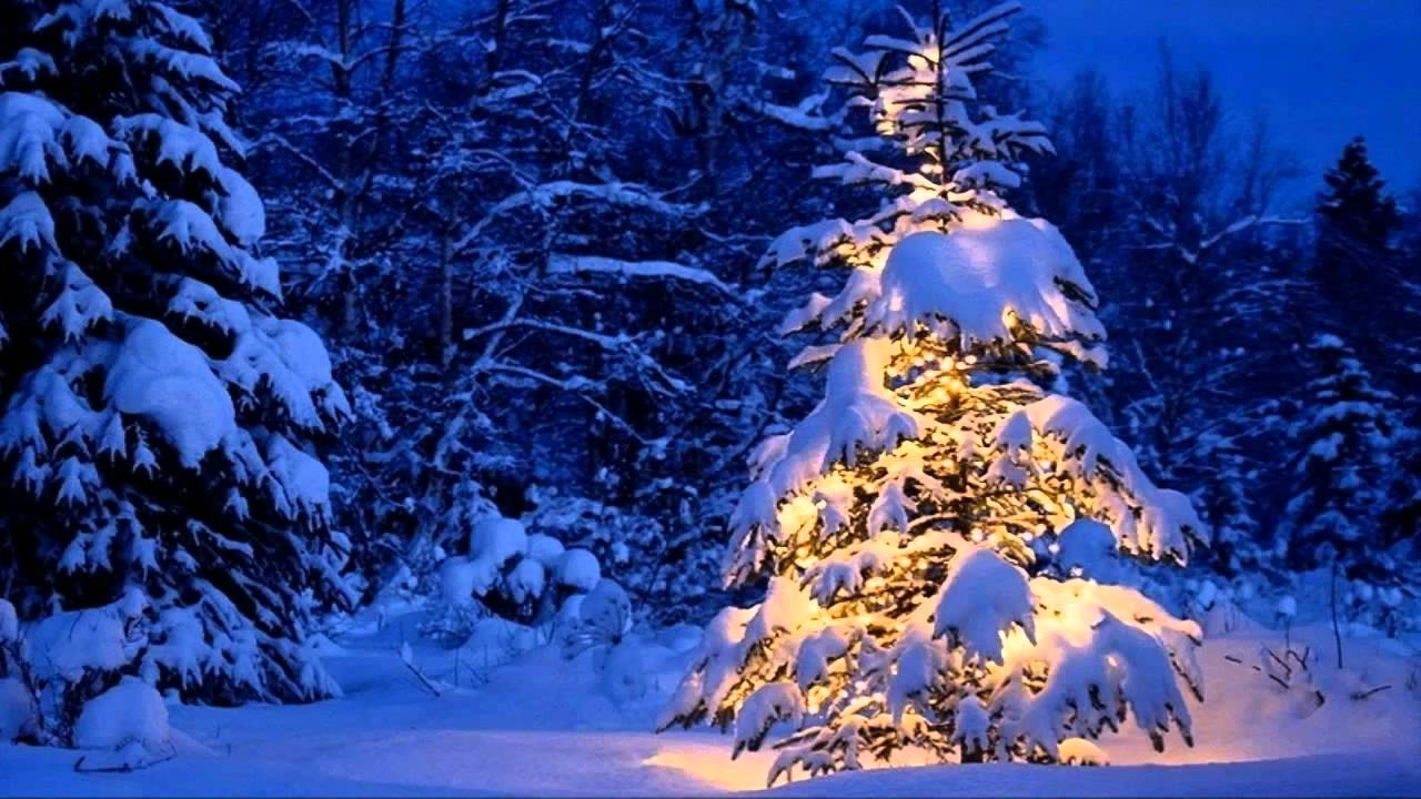 Celine Dion Blue Christmas - YouTube