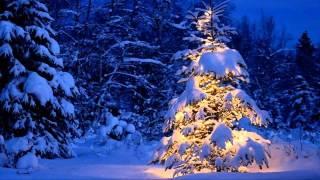 Celine Dion   Blue Christmas