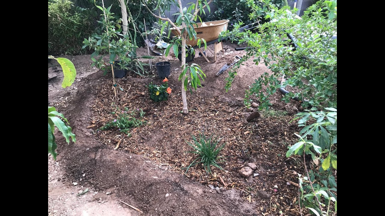 Put ISLANDS In Your Backyard Food Forest YouTube - Backyard islands