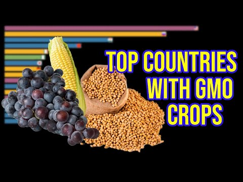 TOP countries with Genetically Modified (GMO) crops