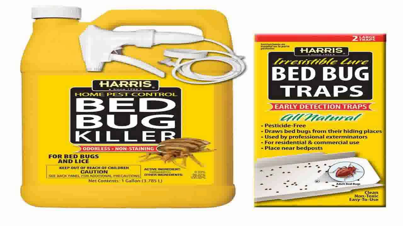 harris bed bug killer gallon spray - youtube