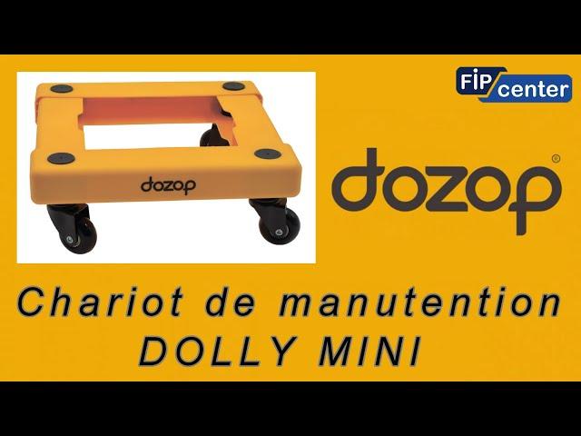 FIPCENTER CHARIOT DE MANUTENTION 100 KG COMPACT ET LEGER DOZOP DOLLY MINI