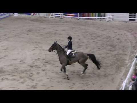 Merivirta Elena & Astro 140cm @ Helsinki Horse Fair 17.-19.3.2017