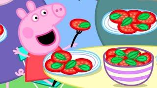 Peppa Pig Français  La Serre De Papy Pig  Compilation Spéciale  Dessin Animé Pour Bébé