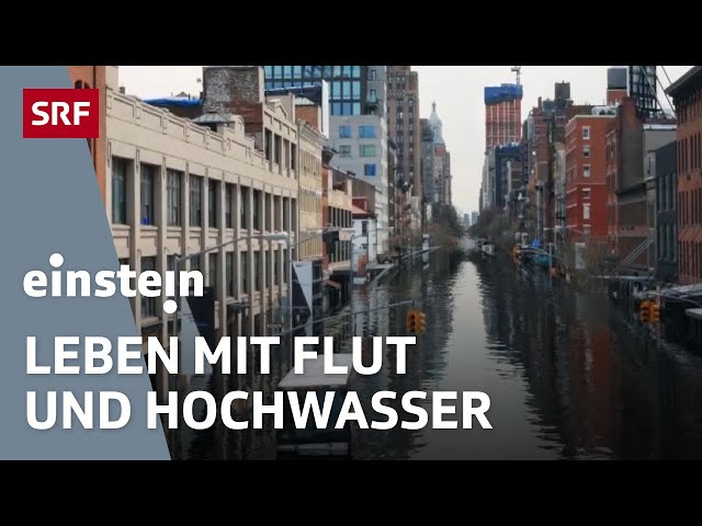 Flut & Hochwasser – Schutz vor dem steigenden Meeresspiegel   Klimaerwärmung   SRF Einstein