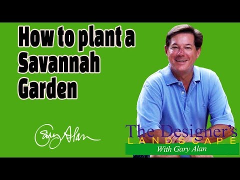 How to plant a Savannah Garden Designers Landscape#622