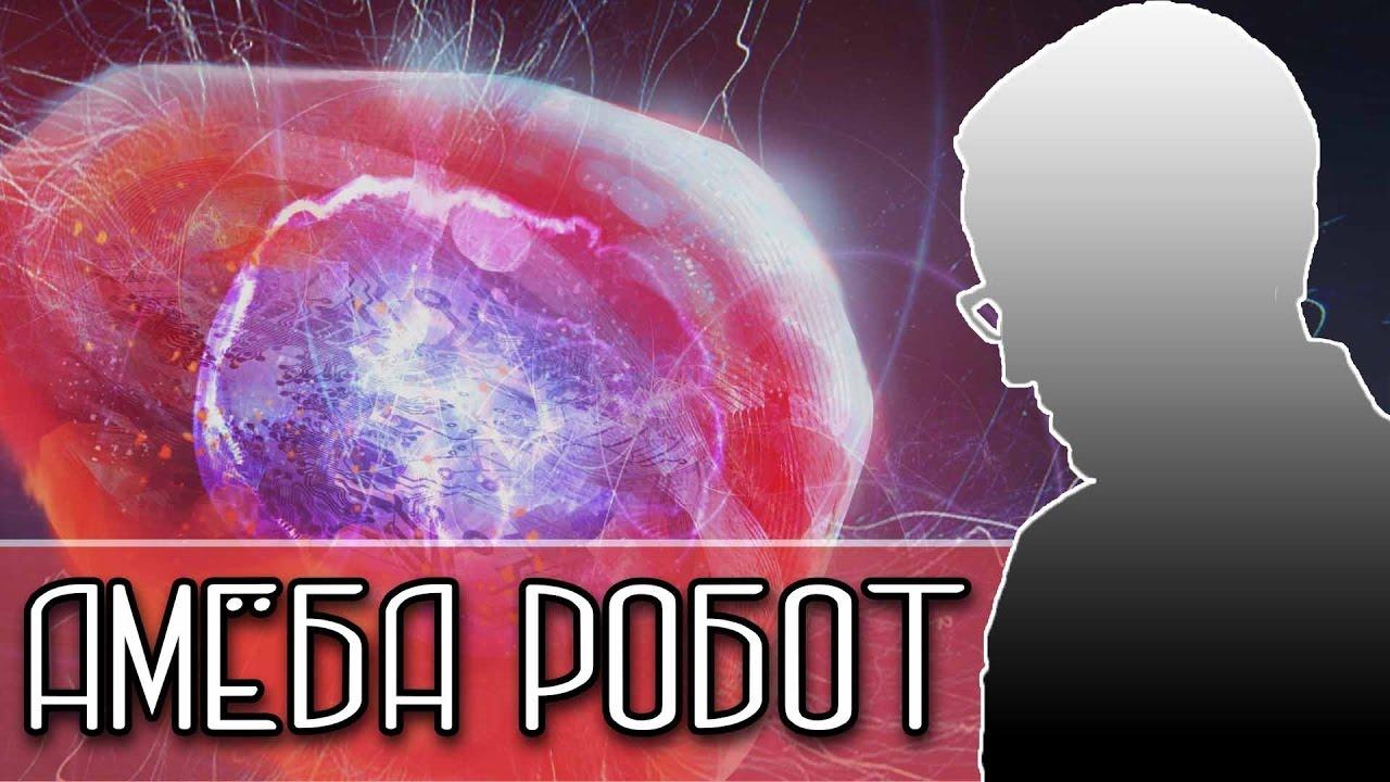 АМЁБА РОБОТ [Новости науки и технологий]