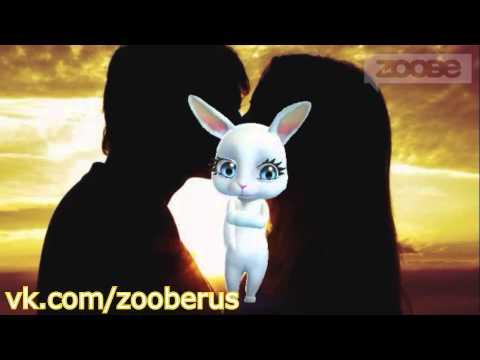 Zoobe зайка - первый поцелуй :) Zoobe Pets.