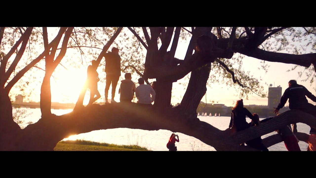 Hans Johnson | Cherry Blossom (Official Video)