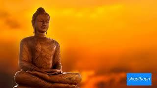 Nhạc Thiền Hoà Tấu Hay - Nghe cho lòng thanh thản