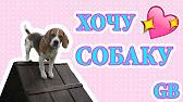 Все питомники биглей в украине. Алфавитный каталог питомников биглей. Киев владелец: ольга мазуренко телефон: +38 093 6409184 e-mail: