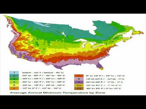 Knowing Your Hardiness Zone Is Important