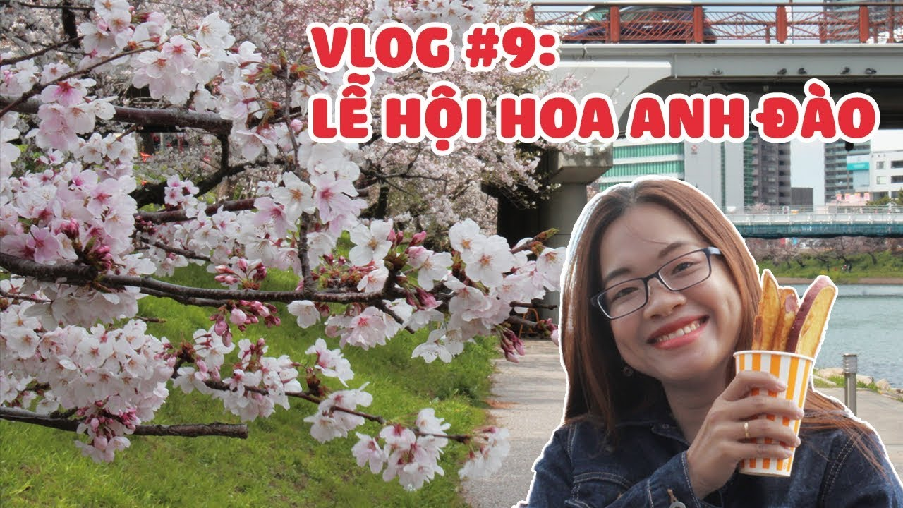 Vlog#9: Lễ hội HOA ANH ĐÀO NHẬT BẢN   Japan Cherry Blossom Festival