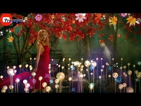 Beautiful Amazing Scene WhatsApp status videos by Prasenjeet meshram