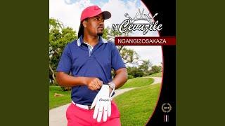 Gambar cover Ngabe Ngiyakushela