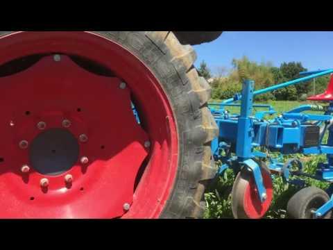 Troisième Binage bleuet biologique 2016