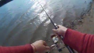 Рыбалка 2016, ловлю леща, река Днестр(Ловля леща на опарыш весной на реке Днестр. Фидерная снасть, опарыш, две удочки и хорошее настроение - это..., 2016-05-10T16:39:06.000Z)