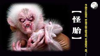 男子燒死百年狐仙壹家,兩年後妻子卻懷人臉狐身怪胎!出生後竟說壹句:是我!