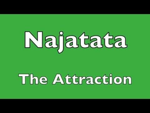 The Attraction   -   Najatata