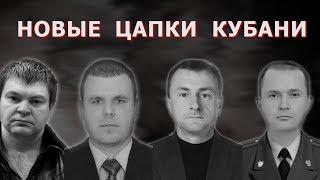 Новые Цапки Кубани | Аналитика Юга России