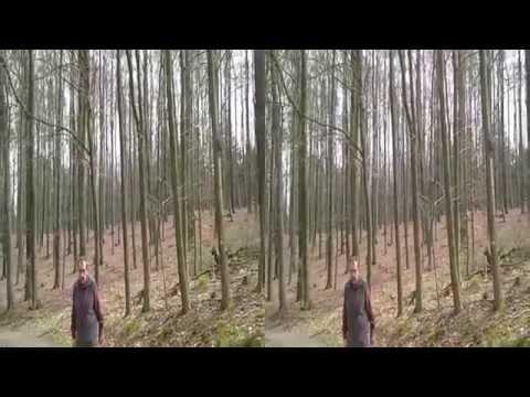 31.03.2014 Zwischen Waldlust Und Stern (Hagener Stadtwald 3)