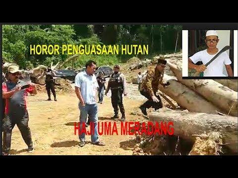 Horor Dari Penguasaan hutan