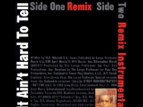 Nas's 'It Ain't Hard to Tell (Remix)' sample of Biz Markie feat ...