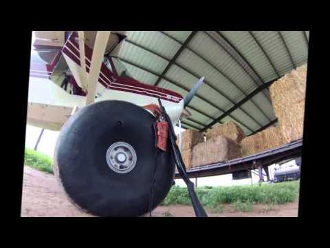 American Champion Scout 8GCBC Bush Flying