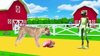 учить животных для малышей - животные для детей - видео развивающее #14