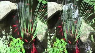 3D Pond Clip