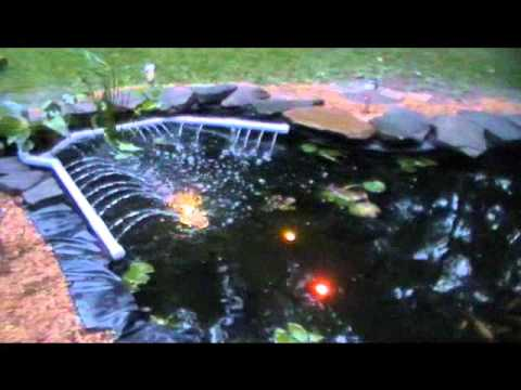 sunny 39 s wildlife koi pond with hand made shishi odoshi
