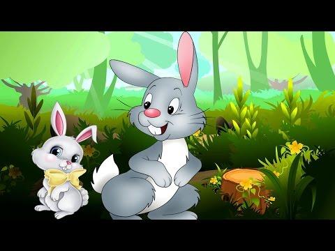 Short Animal Stories for Kids   Lion & the Rabbit   Crane & The Crab