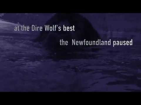"""""""The Dire Wolf"""" - The Tragically Hip (Lyric Video)"""