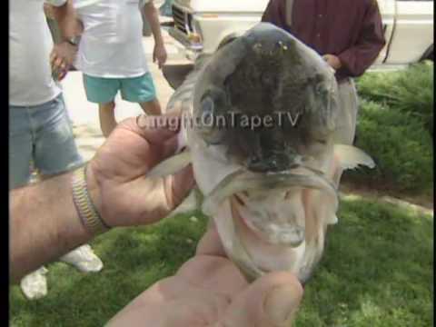 Fisherman Catches Bizarre Fish!